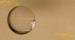 Цены на Акустический короб для Sonance MEDIUM RECTANGLE ACOUSTIC ENCLOSURE