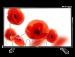 Цены на Telefunken TF - LED32S40T2 Поддерживаемые форматы файлов  -  MKV,   Поддержка цифровых стандартов  -  DVB - T2,   Встроенный медиа - плеер  -  Есть,   Частота обновления  -  50,   Диагональ  -  80,   Поддержка HD  -  HD - Ready,   Поддержка 3D  -  Нет,   Контрастность  -  1200,   Угол обзора по