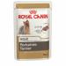 Цены на Royal Canin Паучи Royal Canin Yorkshire Terrier Adult для взрослых йоркширских терьеров 85 г (85 г,   ) Йоркширский терьер — это сказочное создание,   которое очаровывает с первой минуты знакомства с ним. Тоненькие,   хрупкие и изящные йорки в силу своей физиол