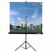 Цены на Lumien LEV - 100103 Экран на штативе Lumien Eco View 200x200 см с возможностью настенного крепления (LEV - 100103)