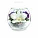 Цены на Композиция из натуральных орхидей (арт. BmiO) в подарочной упаковке Данная композиция состоит из натуральных орхидей,   обезвоженных по специальной технологии,   которая даёт возможность цветам сохранять свой свежий вид на несколько лет,   в среднем 6. В течени