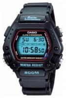 Casio DW-290-1V
