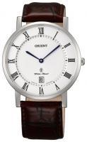 Orient GW0100HW